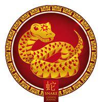 hor scopo chino serpiente tarot y esoterismo hor 243 scopo chino serpiente caracter 237 sticas