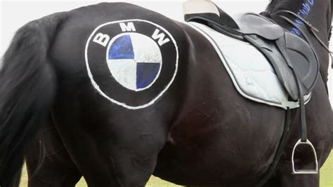 bmw usa logo bmw logo 2013 www pixshark images galleries with a