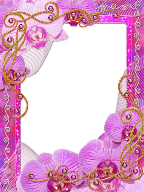 orchideen gestell png frame imagui