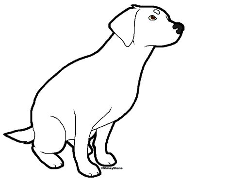 sitting template sitting labrador template by drunkdrawings on deviantart