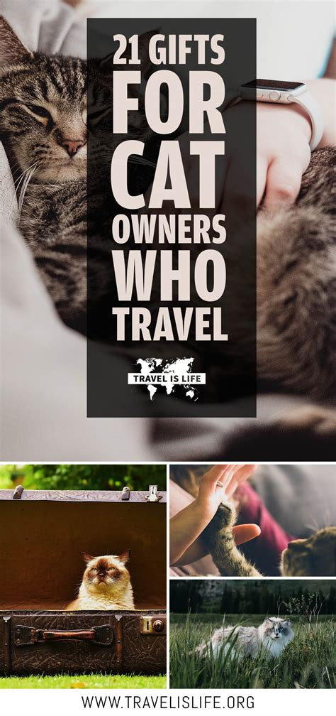 21 gift ideas for cat owners who travel by travel is life