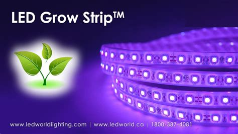 led grow light strips led grow strip for plant production youtube