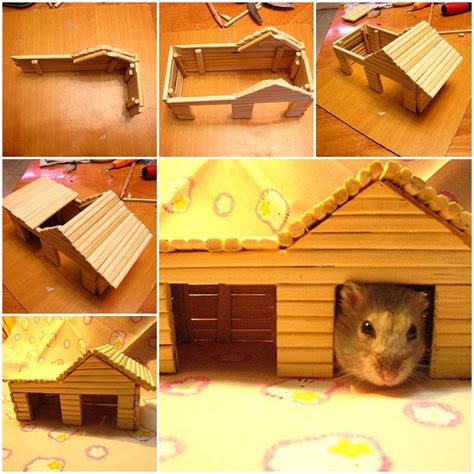 hamster house diy hamster house with chopsticks
