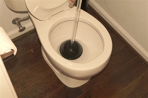 bathroom is clogged how to unclog and plunge a clogged toilet