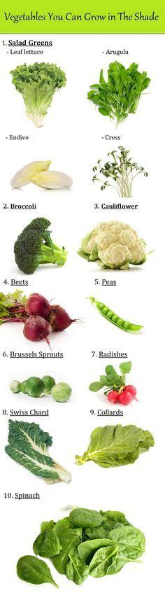 7 Perennial Vegetable Garden Plants Garden Plants Perennial Vegetable Garden