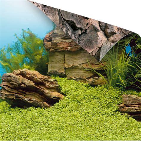 Pflanzen G Nstig Kaufen 126 by Juwel Fotorueckwand Pflanzen Steine 60x30cm Fuer Aquarium