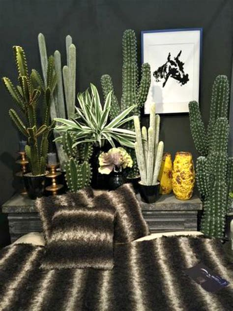 cactus trend new trend cacti mad about the house