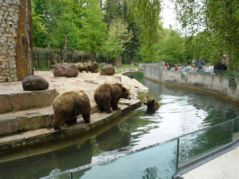 Zoologischer Garten Ulm by Datei Bears In Augsburg Zoo Jpg