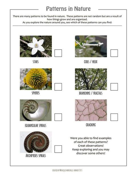 patterns in nature art lesson plans patterns in nature scavenger hunt printable art