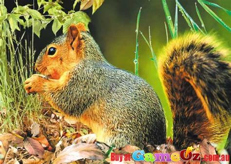 3d Puzzle Squirrel By Bimbozone squirrel ultra 3d jigsaw puzzle