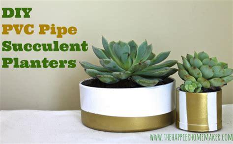 Diy Pvc Planter by Diy Pvc Pipe Planter Bob Vila