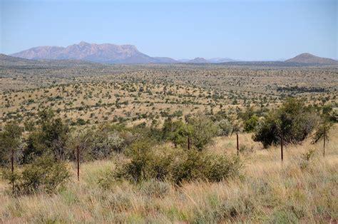 durchschnittliche größe eines badezimmers dass savannen mit ihren park 228 hnlichen baumlandschaften