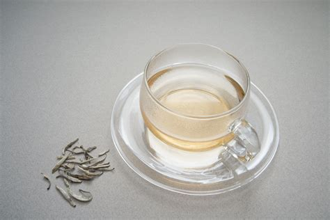 white tea caffeine content preparation and origins