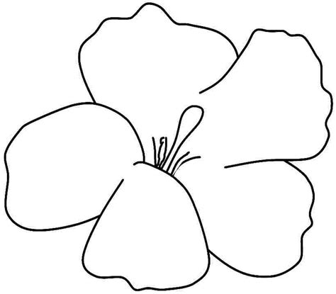 hibiscus coloring printable clipart best