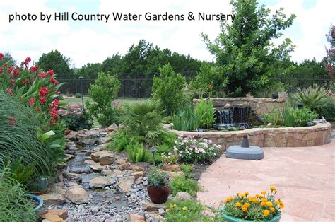 Hill Country Gardens - living it up pond patio design central gardener