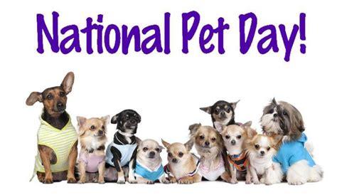 happy national love  pet day eden eternal