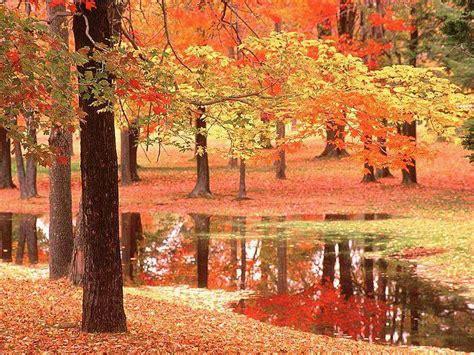 l alimentazione in l alimentazione in autunno associazione per ankh