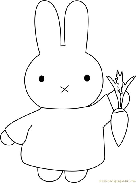 miffy  carrot coloring page  miffy coloring