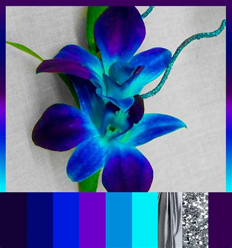 the color orchid bright and colorful room colors teal and purple
