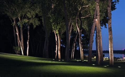 Landscape Lighting In Trees How You Can Use Outdoor Lighting To Highlight Your Landscape