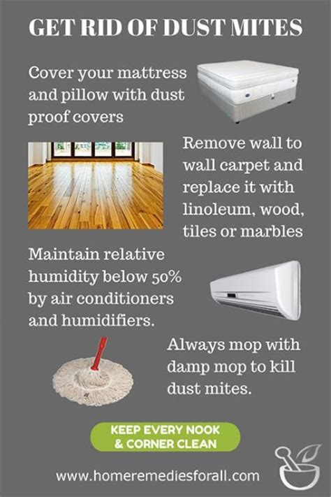 how to get rid of dust mites in bed get rid of dust mites with these home remedies