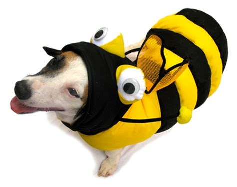bumble bee costume for dogs 3d bumble bee costume bumble bee costumes