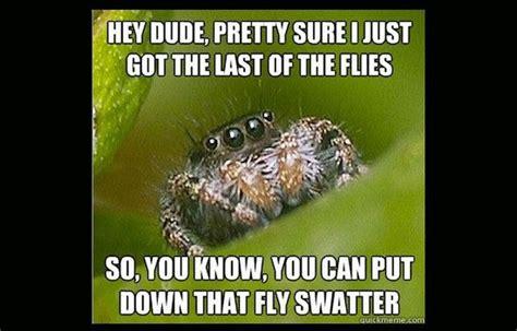 Misunderstood Spider Meme - misunderstood spider meme 16 pics