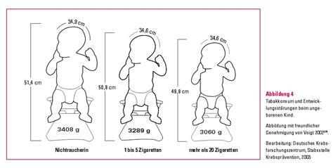 kopfumfang geburt tabelle wer raucht oder hat geraucht w 228 hrend der schwangerschaft
