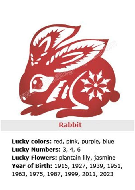 new year hare meaning five elements character and destiny analysis for