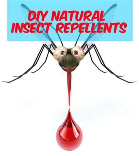 Vegan Friendly Insect Repellants vegan friendly insect repellants
