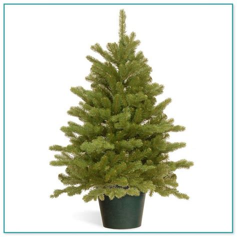 images of buy artificial christmas trees nz christmas