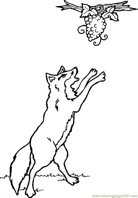 coloring page of grapes on a vine free coloring pages of grapes on a vine