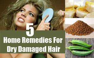 home remedies for damaged hair 5 damaged hair home remedies treatments and