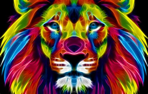 wallpaper colorful lion a colourful lion by idioti123 on deviantart