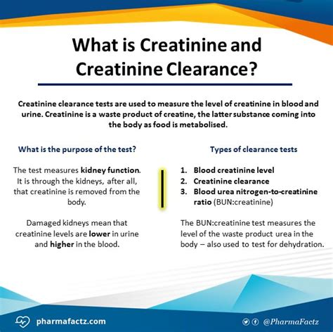 creatine calculator best 20 creatinine clearance ideas on emt