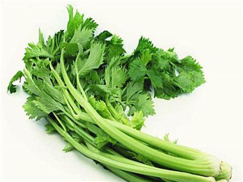 Teh Herbal Seledri 7 obat asam urat di apotik pantangan tanaman obat herbal