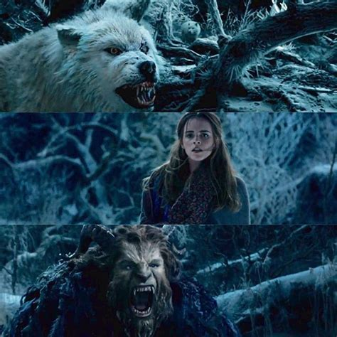 Disney Collection And The Beast Si Cantik Si Buruk Ru i can t wait to see this disney beast and disney fanatic