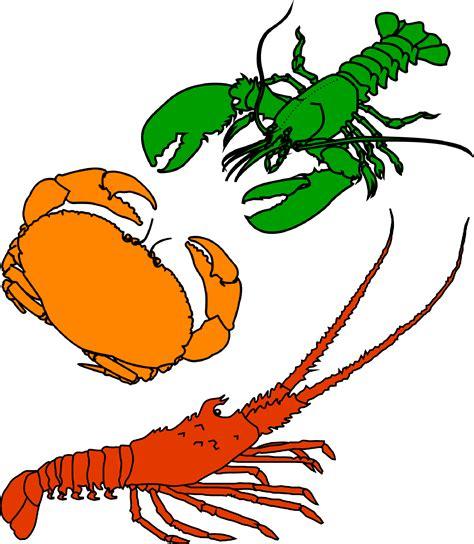 arts clipart crustacean clipart