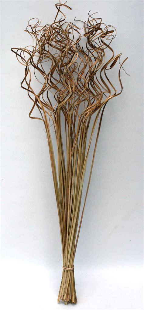 trockenblumen deko trockenblumen deko strauch 196 ste spiralf 246 rmig raumdeko f 252 r
