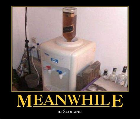 Meanwhile In Scotland Meme - 30 best images about proud to be scottish on pinterest