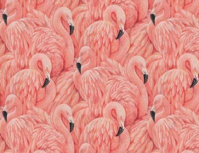 flamingo wallpaper sle large flamingo wallpaper the alley exchange