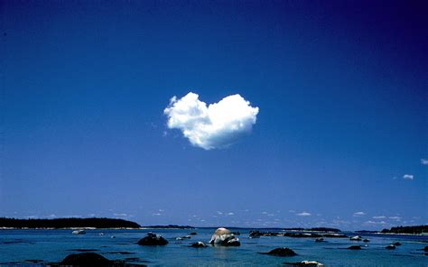 images of love nature love nature wallpaper 754507