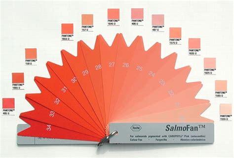 Color Salmone Per Pareti by Di Che Colore Lo Vuoi Il Salmone Ecco Un Pratico