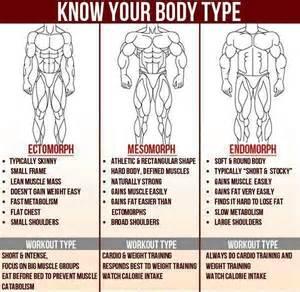 endomorph golden guidelines steffi sorensen fitness