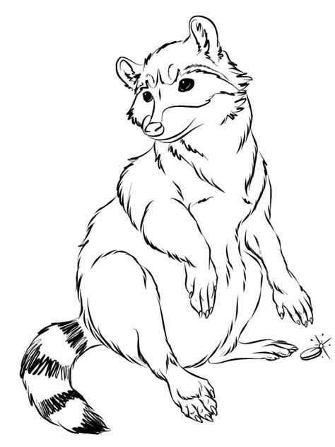 Baby Raccoon Coloring Pages Coloring Home Coloring Pages Of Raccoons