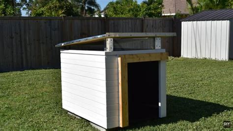 dog house attached to house glen builds diy modern dog house with perfect landscaping
