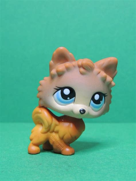 lps pomeranian 1000 ideas about pet shop on pets dogs and cats