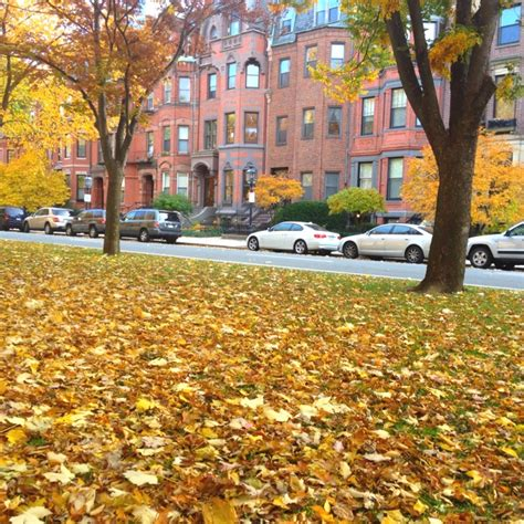 Cab Detox Boston Mass Ave by 10 Best Images About Commonwealth Avenue Boston Ma On