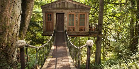 we can buy our parents house south france treehouses for your inner child huffpost uk