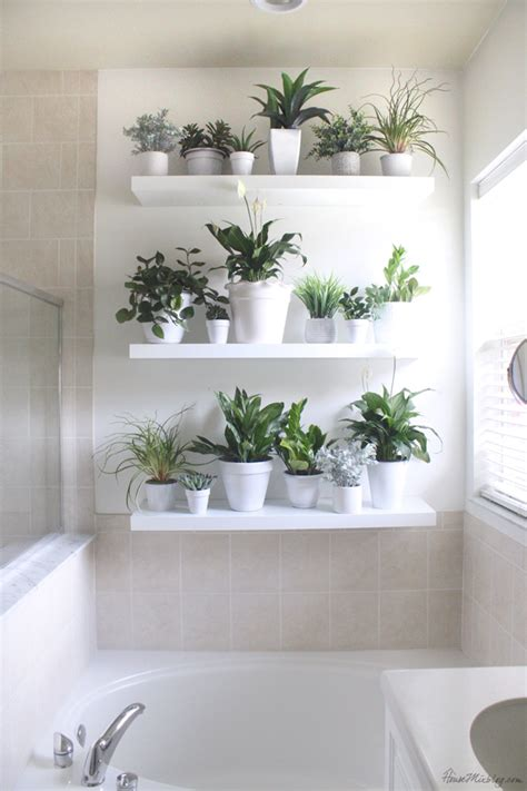 artificial bathroom plants plant wall in the bathroom house mix